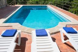 pool-3chairs